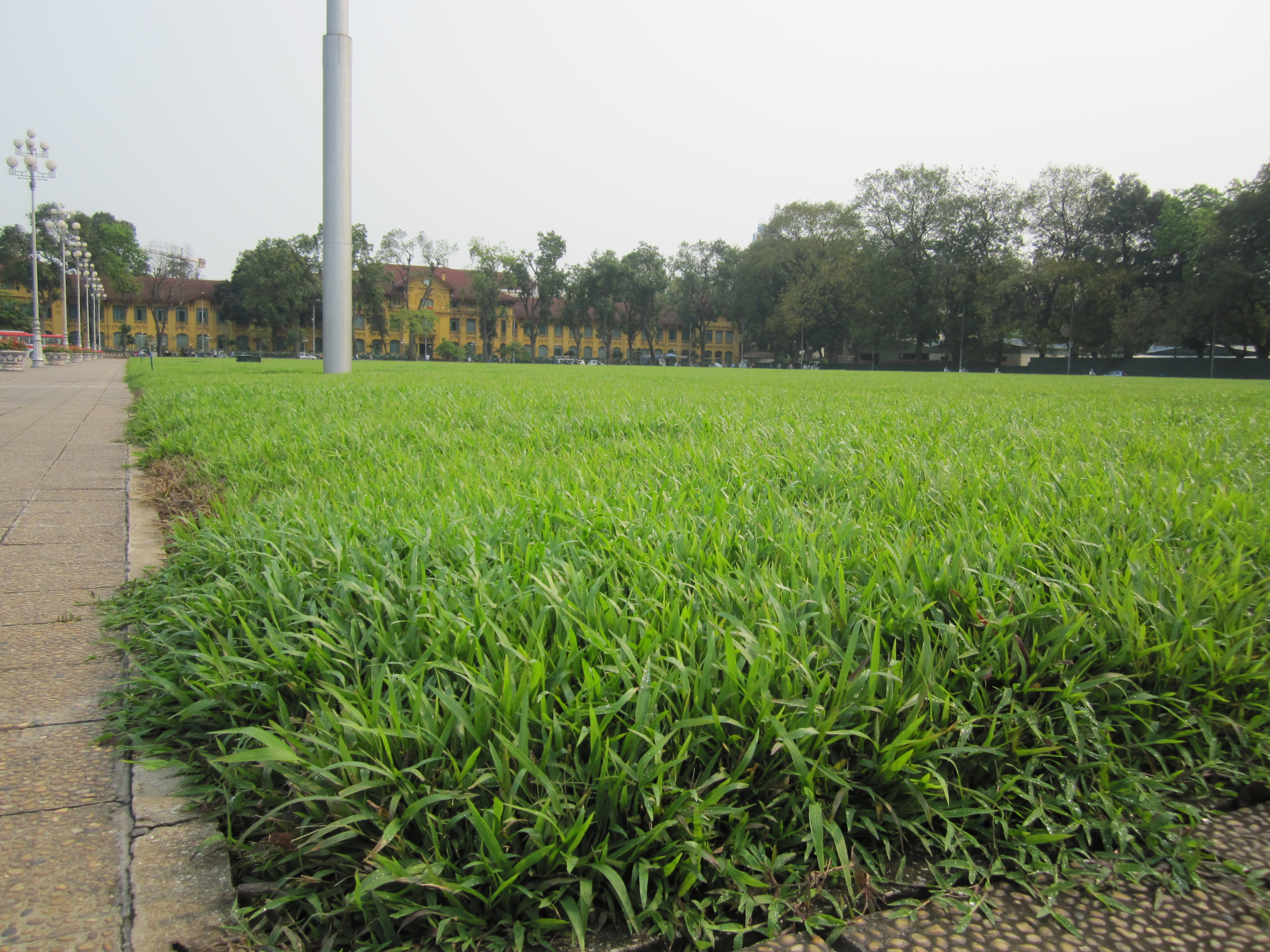 Grass fields representing the different provinces of Vietnam with the Parliamentary building (I think?) in the background.